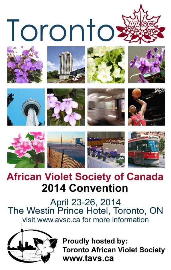 Convention 2014 Poster